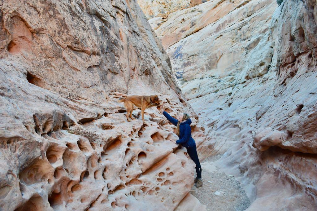 Little Wild Horse Slot Canyon