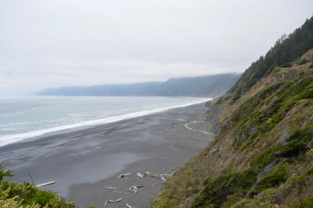 Black Sand Beach Shelter Cove