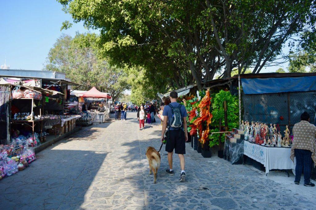 Tonola Market Mexico